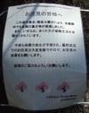 Ynk110405kokuchi_2