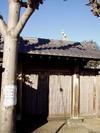 yanaka0113