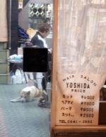 Yanaka061211_72